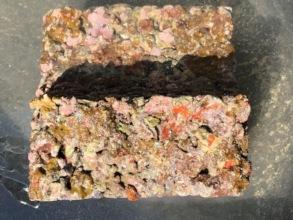 Oceanite Sponge, CCA & Wild Coral Recruits 14M