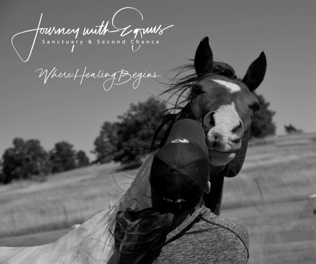 Where Healing Begins For Humans and Horses