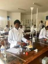 Olive doing a Biology Lab