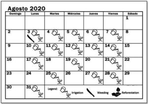 August 2020 Working schedule