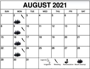 August 2021 Working schedule
