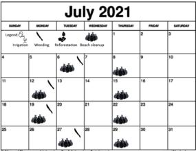 July 2021 Working schedule