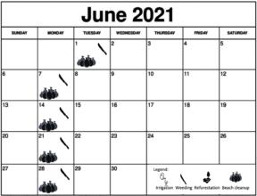 June 2021 Working schedule