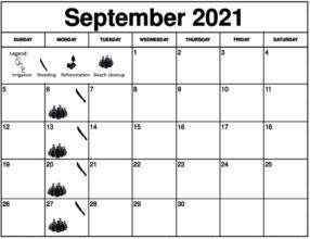 September 2021 Working schedule