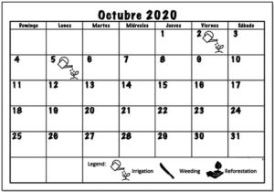 October 2020 Working schedule