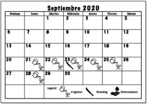 September 2020 Working schedule