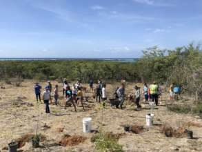 Reforestation with community members & volunteers