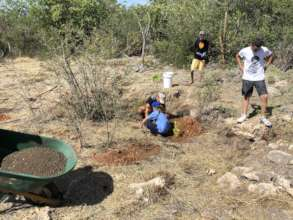 Volunteers participating in reforestation