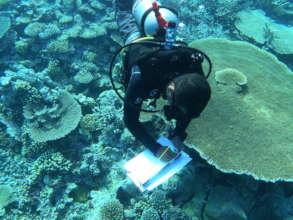 Recording observations underwater
