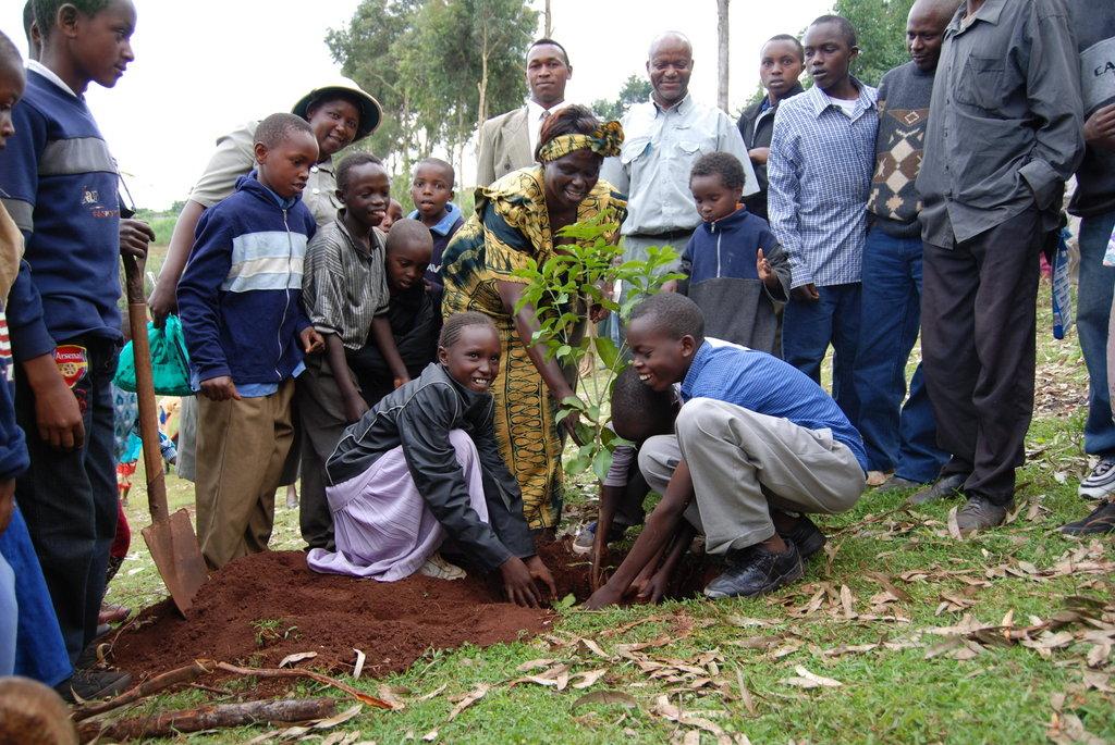 Community tree planting project in Mount Kenya
