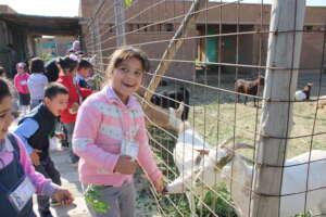 Help Yazidi Women & Families at the Healing Garden