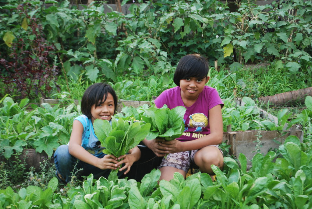 Covid 19: Home-Gardening for Food Security
