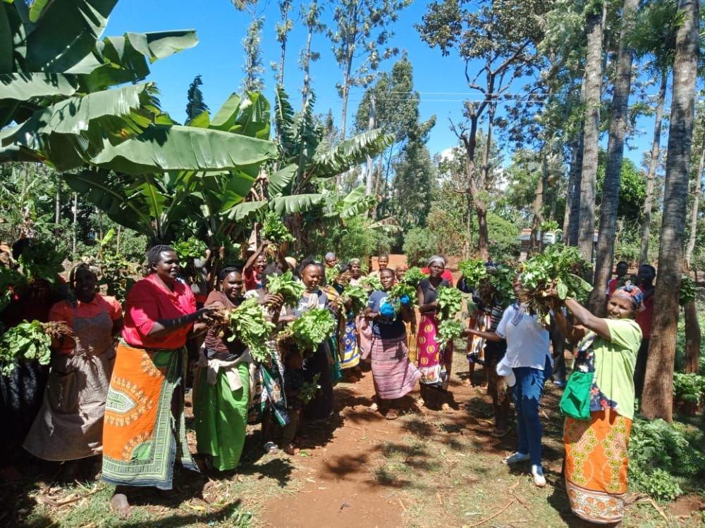 Seedlings & Soap: Promoting Food Security in Kenya