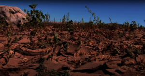 The effects of climate change on farmers