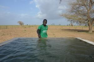 Water basin in the communty of Back Samba Dior