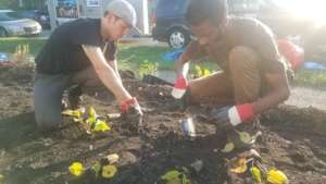 Detroiters working together to build rain garden