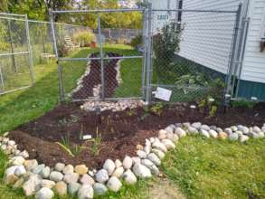 Detroit rain garden: fighting sewer overflows
