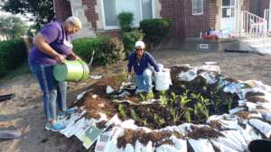 Volunteers Laying Mulch to Fight Weeds