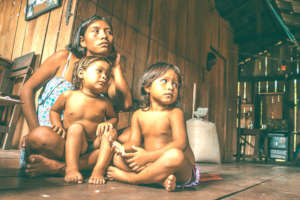 Sustainability & Food Security for the Amazon-BR