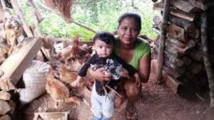 Hens Hatching Hope:  Un Huevo Cada Dia