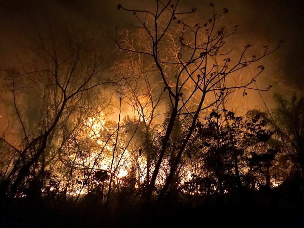 Protect CIWY's Wildlife Sanctuaries from Fires