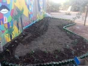 Our grey water garden being laid out