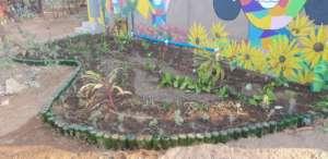 Water wise - grey water garden