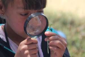 Children exploring a close-up of nature