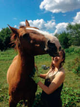 The horse-human interactions we think are best.