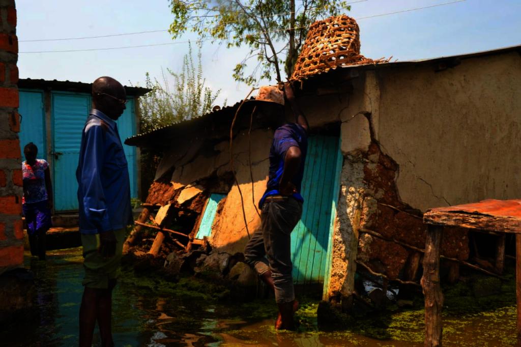 Save 50 Flood Survivors to rebuild their houses.
