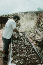 Our Project Director planting seeds