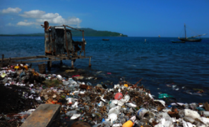 Toilet in Haiti (credit: Dr. Minmin Yen)