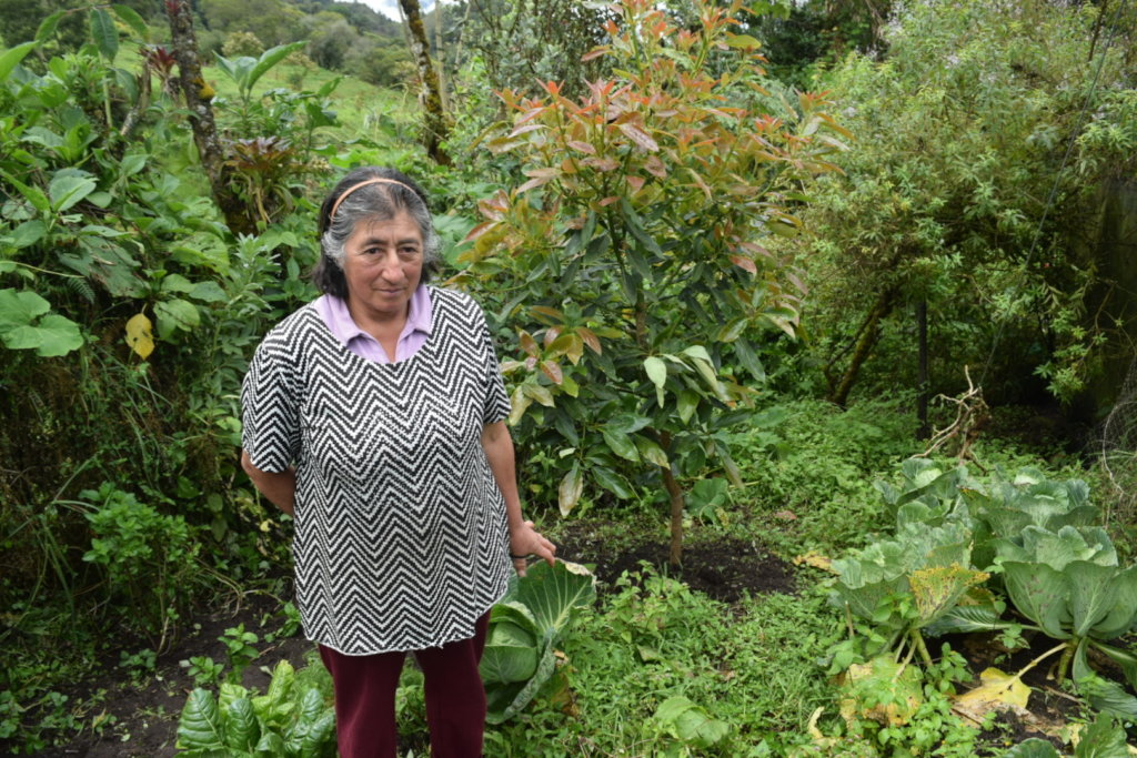 Community Edible Forest to Empower Rural Women