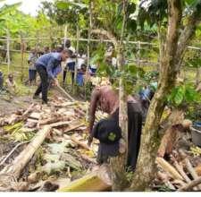 Staff and Survivor women working in the field.