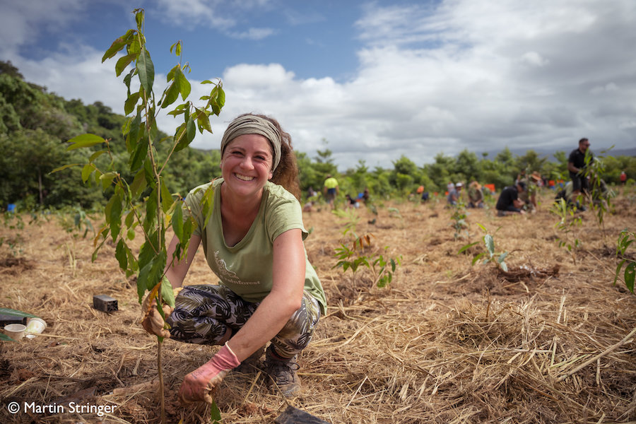 Build a Native Tree Nursery for the Daintree