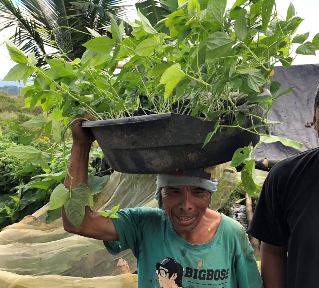 Youth-led Permaculture Initiative for 800 Youth