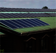 Solar Panel for Pumping water and lighting