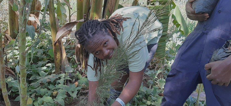 Climate Action Awareness Through a Shelter-Kenya