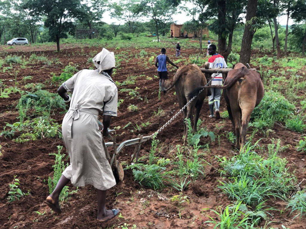 Delivering Food to Hungry Families in Zambia