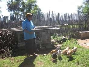 Local chicken rearing intervention