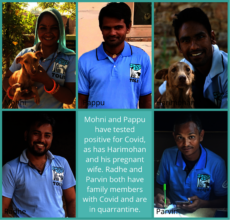 Some of our staff affected by the Covid crisis