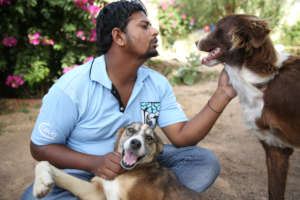All our staff love the animals we help