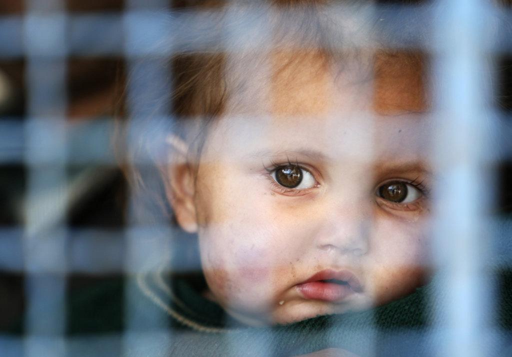 Addressing Humanitarian Needs in Gaza