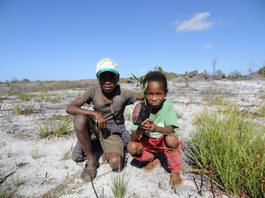 Conserving forest biodiversity in Madagascar