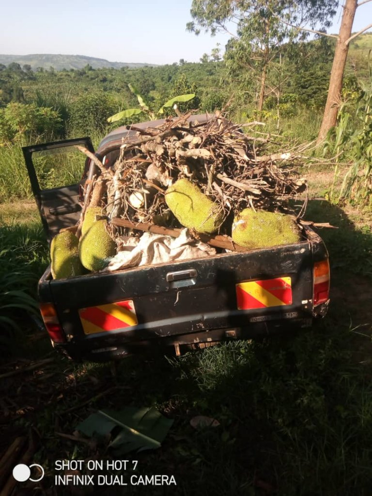 SECURING OUR SUSTAINABILITY WITH A TRUCK