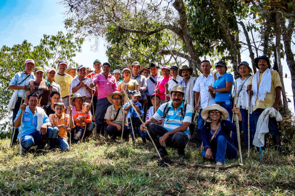 Saving the last Black Oak forests in Colombia