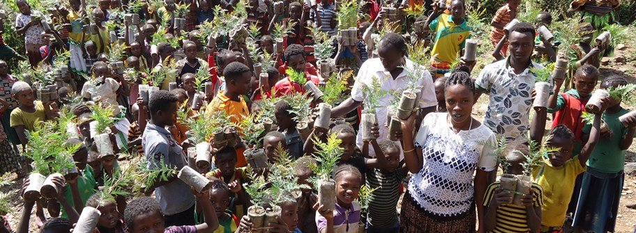 Cultivate Plants- Cultivate Peace in Ethiopia