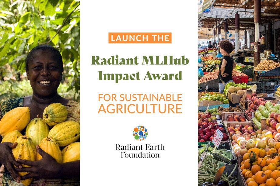 Launch the Radiant MLHub Impact Award!