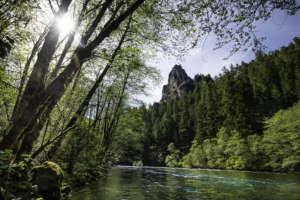 North Umpqua River - Tyler Roemer photo