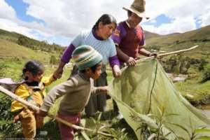 Photo from Pachamama Raymi